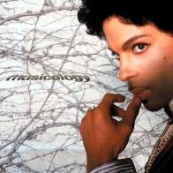 musicology-4e7881eb3a24e